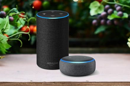Amazon cuts prices on Alexa-controlled Echo and Echo Dot bundles