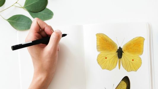 The best pens for artists