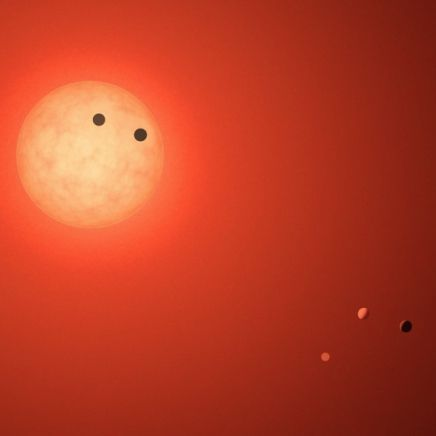 One of the TRAPPIST-1 exoplanets might have an ocean, researchers now say