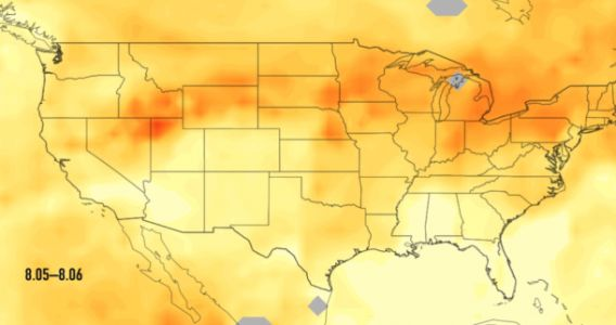 California's massive wildflowers are pushing carbon monoxide across the country