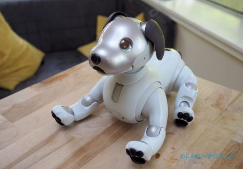 Sony aibo Review (2018): Robot pup charm