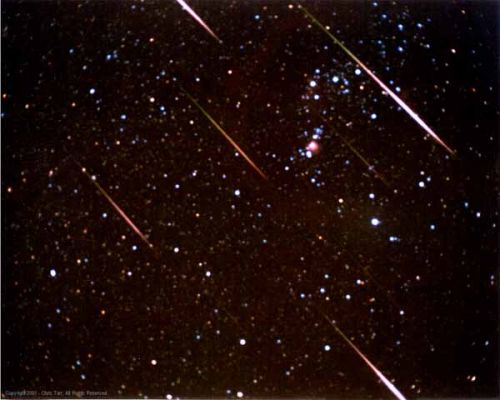 Leonid Meteor Shower: Bright Fireballs in November