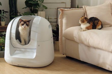 A Fitbit for your cat shit: Automatic litter box tracks your kitty's health