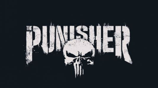 The Punisher Confirmed For A Second Netflix Season