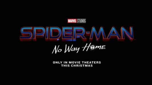 The Real Official Title For Spider-Man 3 is SPIDER-MAN: NO WAY HOME