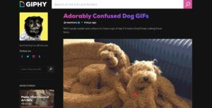 Giphy redesigns homepage to feature curated GIF story collections