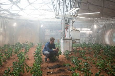 Farming on Mars? Space crops could get boost from plant hormone, study finds