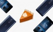 Nokia 8 gets Android Pie beta, complete with the new gesture navigation