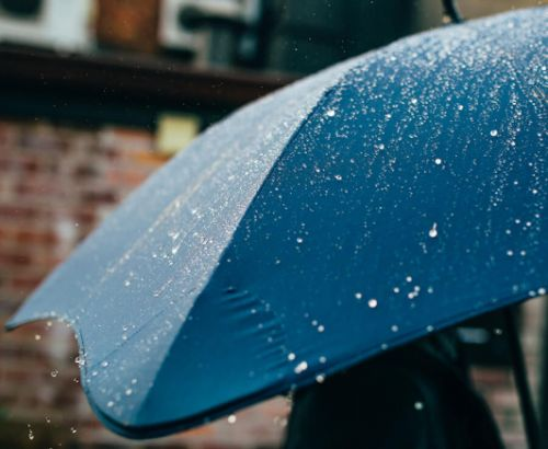 Amazon's best-selling umbrella is windproof, but still compact and lightweight enough to carry anywhere
