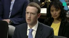 Mark Zuckerberg Explains Facebook To U.S. Senators