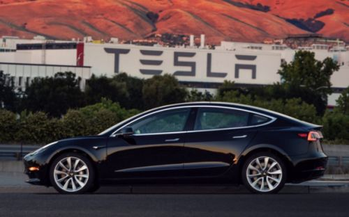Teslas could be getting a 'dog mode' for when your good boy needs to stay in the car