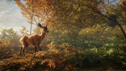 Hunting simulator theHunter: Call of the Wild receives gorgeous Xbox One X upgrade