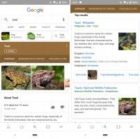 Google Search Gains Thumbnails to Help Sort Results