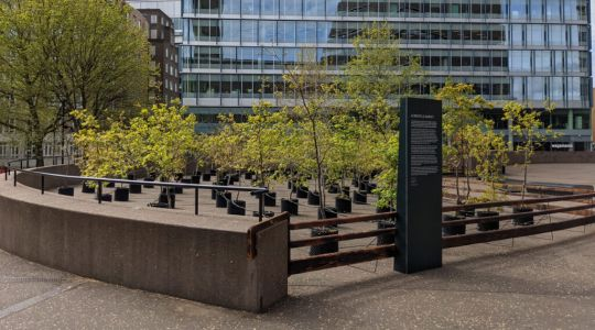 The sad sight of Beuys' Acorns outside the Tate Modern