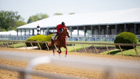 How to watch Preakness Stakes 2021 online from anywhere