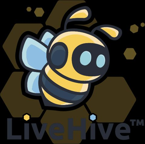 Meet LiveHive: Helping SMEs Access Gaming, E-Commerce Markets