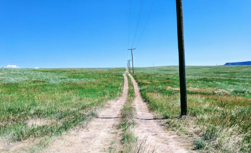 Ofcom hopes coverage obligations and spectrum sharing will boost rural 4G