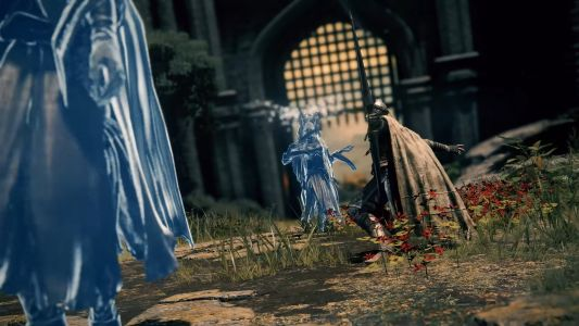 Elden Ring co-op multiplayer confirmed for up to four players