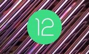"""The Android 12 beta is the most downloaded beta in Android history """"by far"""""""