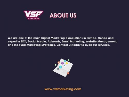 SEO Company in Tampa - VSF Marketing